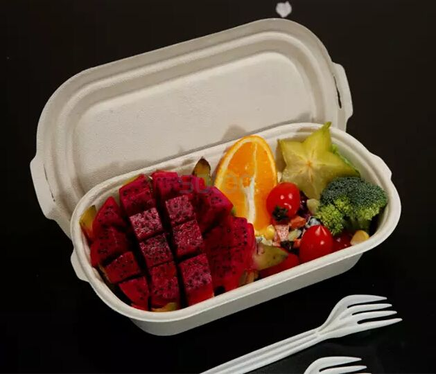 Compostable sugarcane Single Compartment  clamshell
